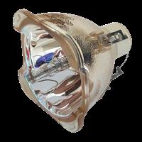 Lampa pro projektor OPTOMA EW766W, kompatibilní lampa bez modulu