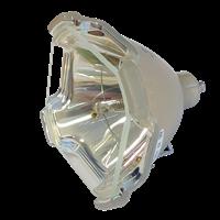 Lampa pro projektor SHARP XG-P25XE, originální lampa bez modulu