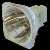 Lampa pro projektor VIVITEK D820MS, kompatibilní lampa bez modulu