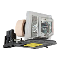 ACER X110P Lampa s modulem