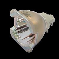 EIKI EK-800U Lampa bez modulu