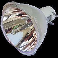 NEC P502WG Lampa bez modulu