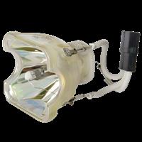 NEC VT590 Lampa bez modulu