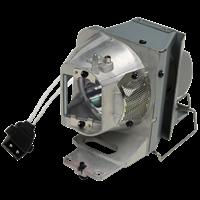 OPTOMA DW318e Lampa s modulem