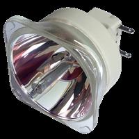 Lampa pro projektor OPTOMA W501, originální lampa bez modulu
