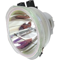 PANASONIC PT-DX100L (portrait) Lampa bez modulu