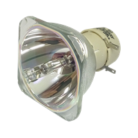PHILIPS-UHP 190/160W 0.8 E20.9 IC Lampa bez modulu