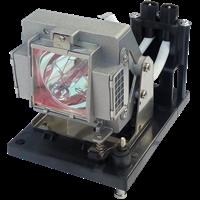 SANYO PDG-DXT10 Lampa s modulem