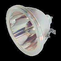 SANYO PLC-XU10 Lampa bez modulu