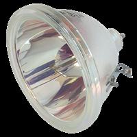 SHARP XG-V10WE Lampa bez modulu