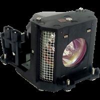 SHARP XV-DT300 Lampa s modulem