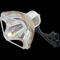 SONY LMP-P260 Lampa bez modulu