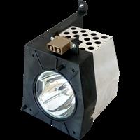 TOSHIBA D95-LMA (23311168) Lampa s modulem
