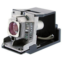 TOSHIBA EX20 Lampa s modulem